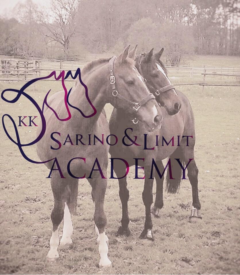 Sarino & Limit Academy