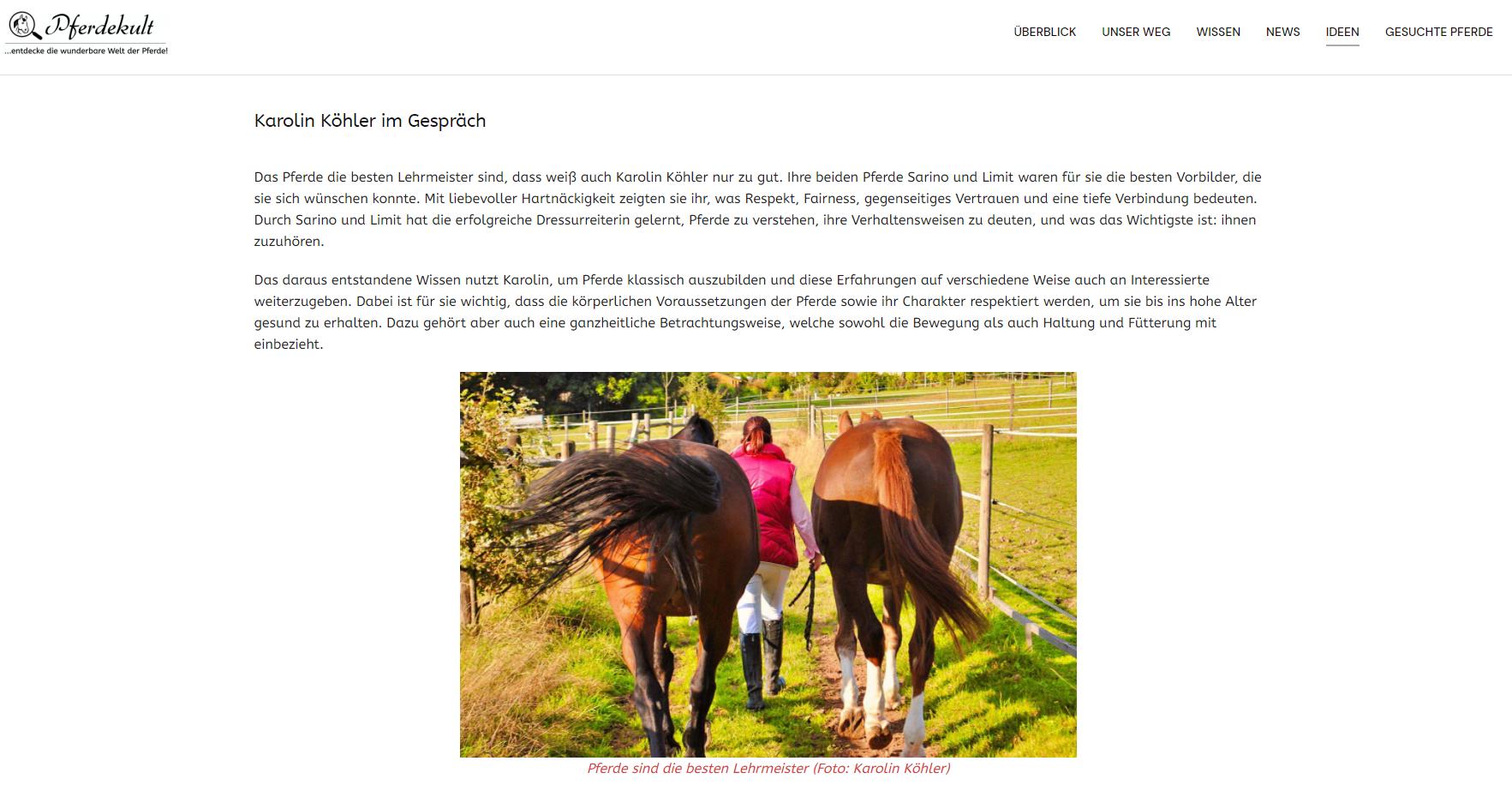 Interview mit Pferdekult