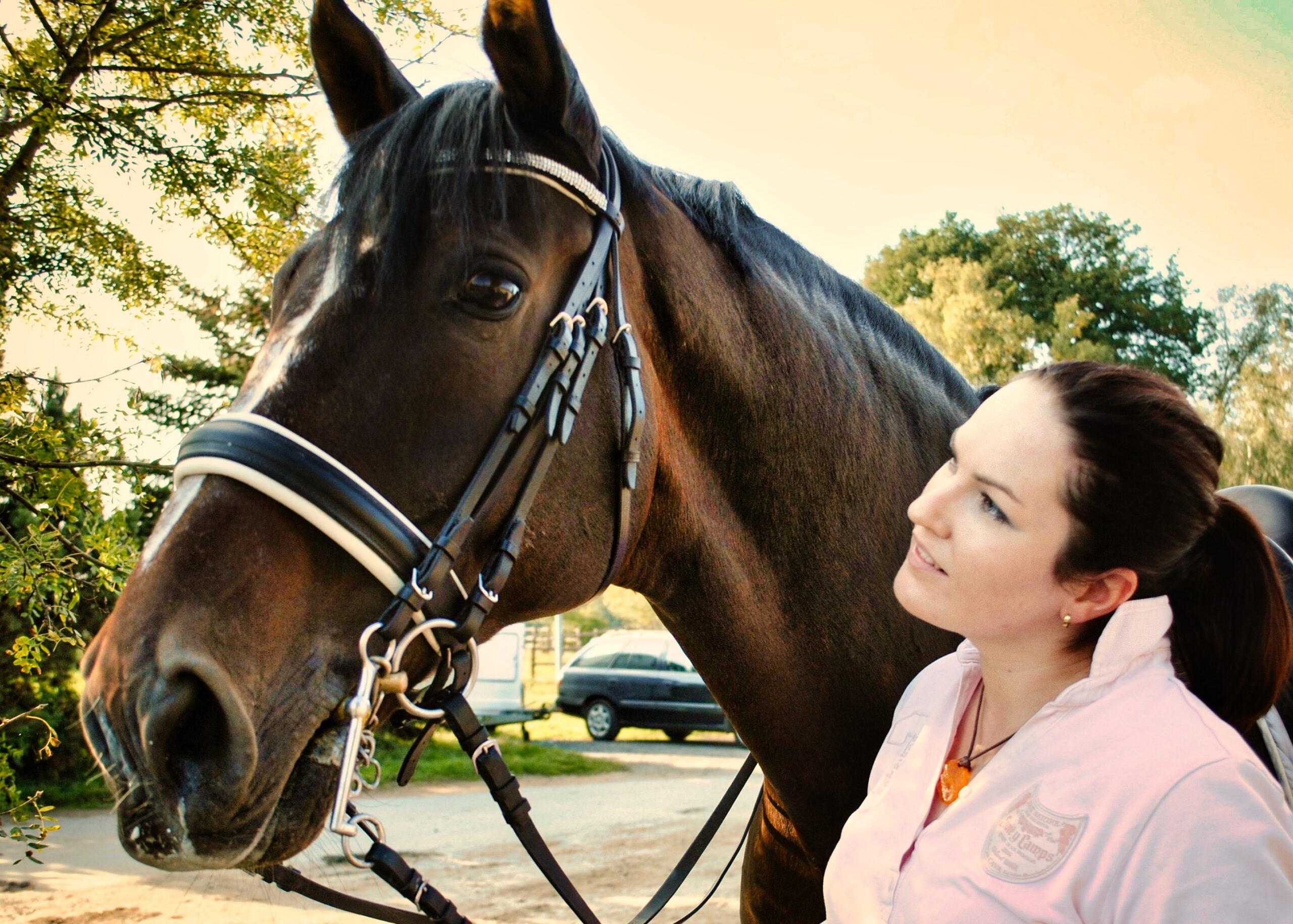 Pferde mit Handicap